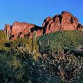 Desert Landscape by Crystal Garner
