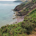 Devon Coastal View by Patricia Hofmeester