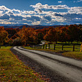 Dirt Road Through Vermont Fall Foliage by Jeff Folger
