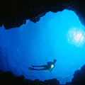 Diver At Cavern Entrance by Dave Fleetham - Printscapes