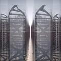DNA by Ryan Darling