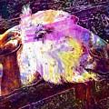Donkey Livestock Beast Of Burden  by PixBreak Art