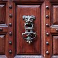 Door Knocker by Carlos Caetano