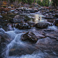 Down River by Mitch Shindelbower