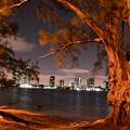 Downtown Miami by Jorge Cruz