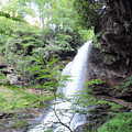 Dry Falls  by Savannah Gibbs