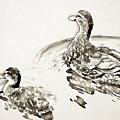Duck by Lora Battle