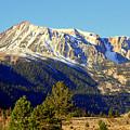 Eastern Sierras by Lynn Bawden