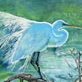 Egret In The Summer Breeze  by Dawn  Johansen