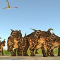Einiosaurus Dinosaurs by Corey Ford