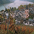 Elevated View Of Bacharach by Panoramic Images