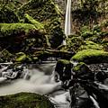 Elowah Falls by Vinnie Halpin