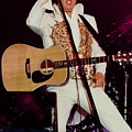 Elvis In Concert by Anthony Dezenzio
