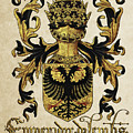 Emperor Of Germany Coat Of Arms - Livro Do Armeiro-mor by Serge Averbukh