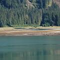 Endicott Glacier Area  by Carol  Eliassen
