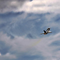Eurofighter Typhoon by Angel Ciesniarska