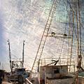 Evening In The Harbor by Susanne Van Hulst