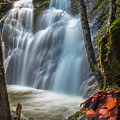 Fairy Falls by Michele James