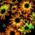 Fall Flowers by Heather Joyce Morrill