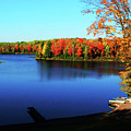 Fall In Northern Wisconsin by Tommy Anderson