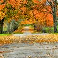Fall Road by Bob Welch