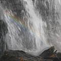 Falls And Rainbow by Paul Tokarchuk
