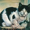 Farm Cat by Hans Droog