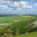 Farmlands. by Angela Aird