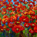 Field Of Poppies by Mary Jo Zorad