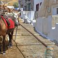 Fira - Santorini by Joana Kruse