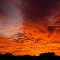 Fire In The Sky by Amanda Vouglas