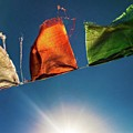Flags by Aleck Cartwright