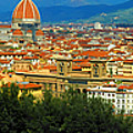 Florence, Italy Panoramic by Mike Nellums