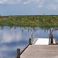 Florida Backwater by Allan  Hughes