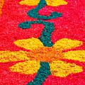 Flower Carpets by Gaspar Avila