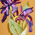 Flowers by Fernando Bolivar