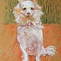 Follette by Henri De Toulouse-Lautrec
