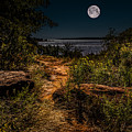 Follow The Path by Doug Long