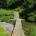 Footbridge Over A Creek by Robert Hamm