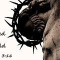 John 3 16 For God So Loved The World by Jani Freimann