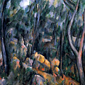 Forest In The Caves Above The Chateau Noir by Paul Cezanne