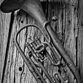 Forgotten Tuba by Garry Gay