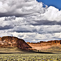Fort Rock by Albert Seger