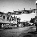 Fort Worth Stockyards Bw by Joan Carroll