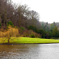 Fountains Abbey  Lake 1 by Svetlana Sewell