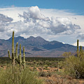 Four Peaks In May by Cathy Franklin
