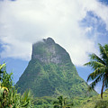 French Polynesia Moorea by Joe Carini - Printscapes