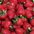 Fresh Strawberries by Sally Weigand