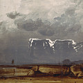 From North Cape by Peder Balke