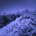 Frosty Field by Der Typ Von Nebenan